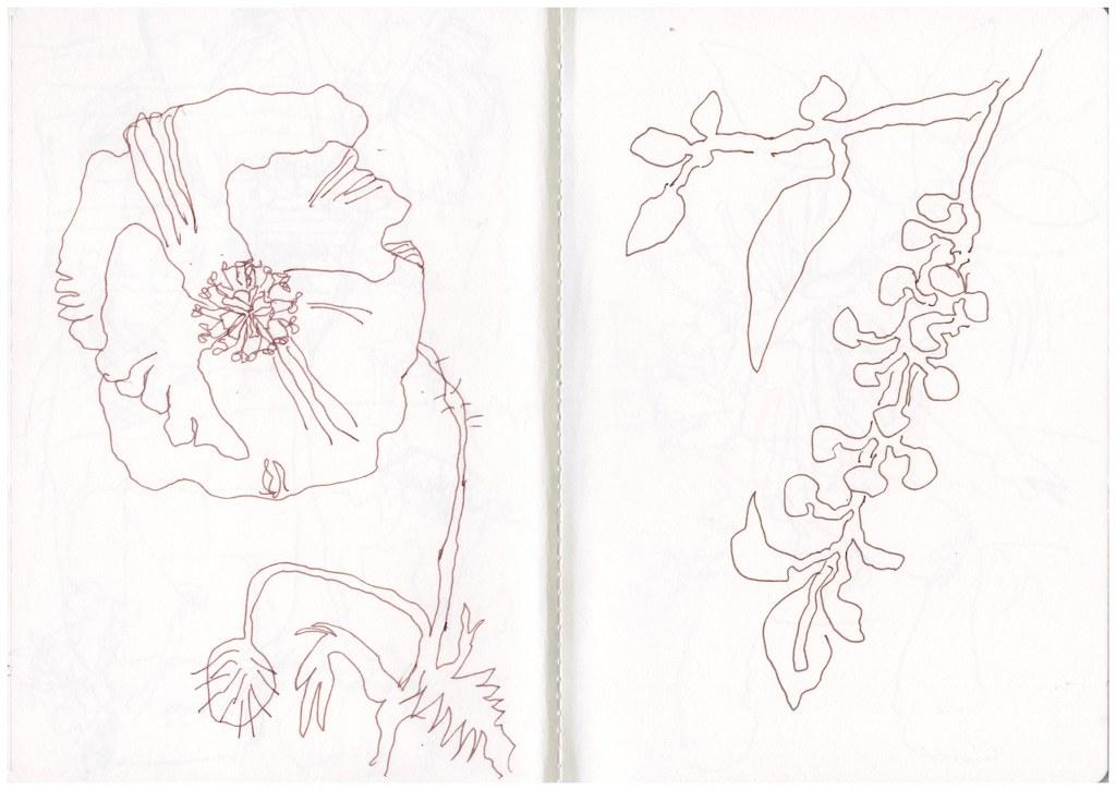 Urlaub Toskana Skizzenbuch, Zeichnung von Susanne Haun (c) VG Bild-Kunst, Bonn 2019