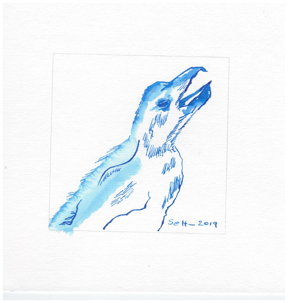 Afrika, Pinguin, Zeichnung von Susanne Haun (c) VG Bild-Kunst, Bonn 2019