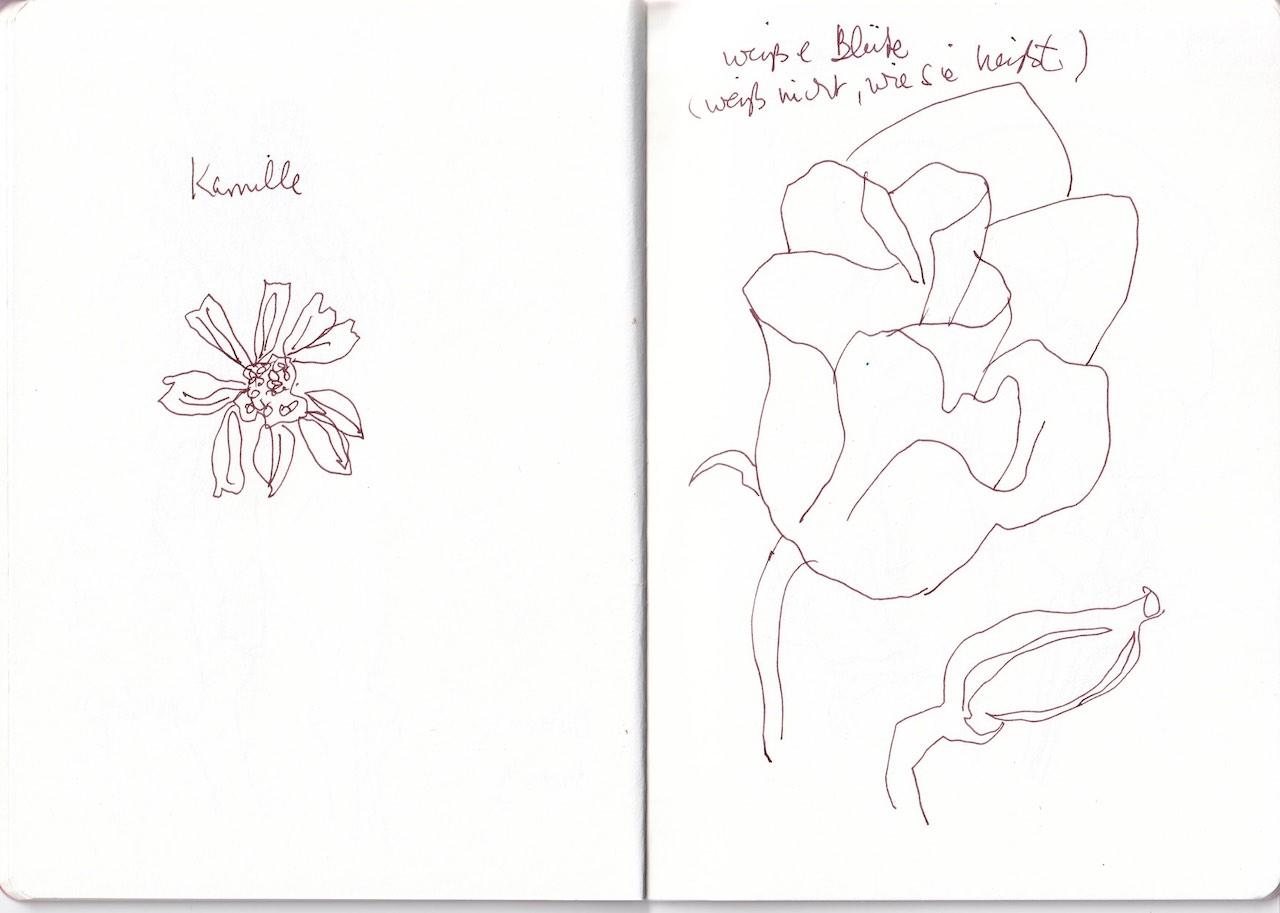 Naturstücke aus Susanne Haun Skizzenbuch (c) VG Bild-Kunst, Bonn 2020