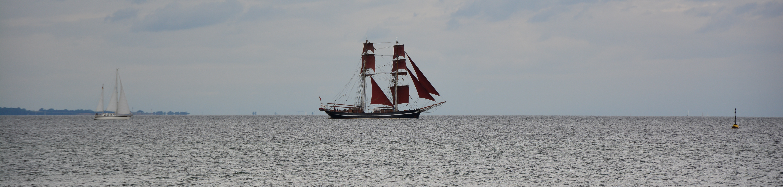 An der Steilküste Kiel (c) Foto von M.Fanke
