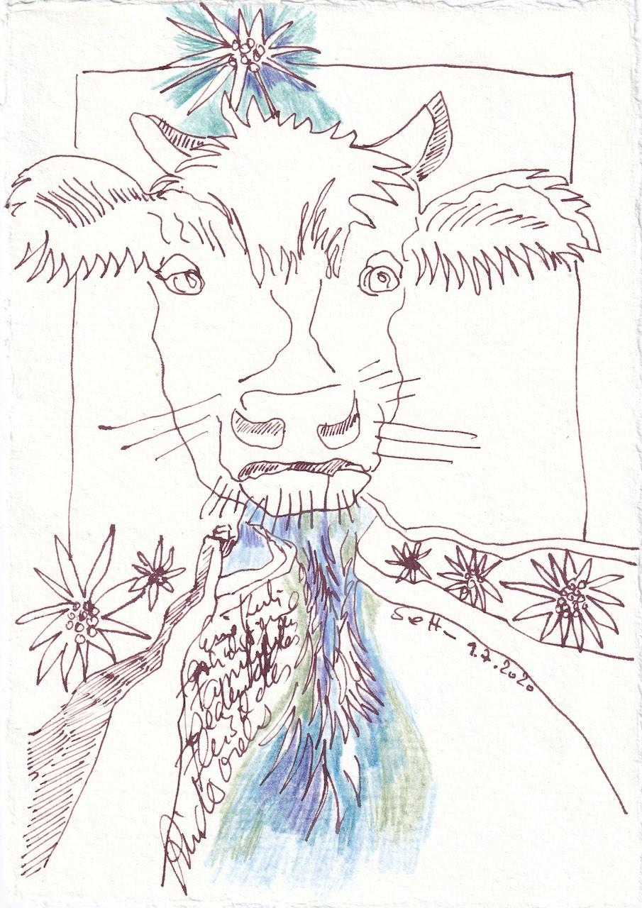 Tagebucheintrag 9.7.2020, Die Kuh macht muh, 20 x 15 cm, Tinte und Buntstift auf Silberburg Büttenpapier, Zeichnung von Susanne Haun (c) VG Bild-Kunst, Bonn 2020