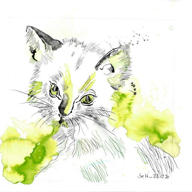 Portrait der Katze Nike, 25 x 25 cm, Zeichnung von Susanne Haun (c) VG Bild-Kunst, Bonn 2021