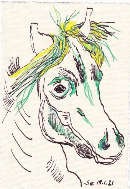 Tagebucheintrag 19.01.2021, Grüner Pferdekopf, 20 x 15 cm, Tinte und Aquarell auf Silberburg Büttenpapier, Zeichnung von Susanne Haun (c) VG Bild-Kunst, Bonn 2021